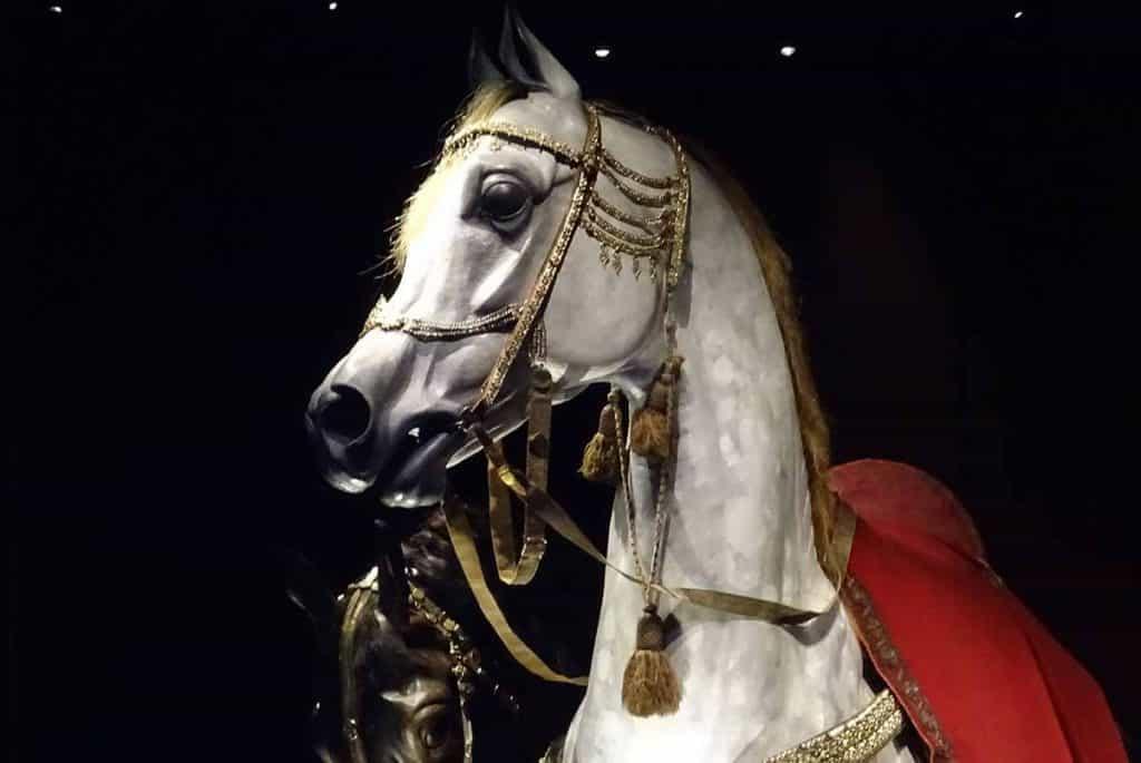 Türckische Cammer Pferd