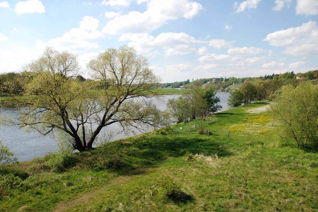 Elbe Blick