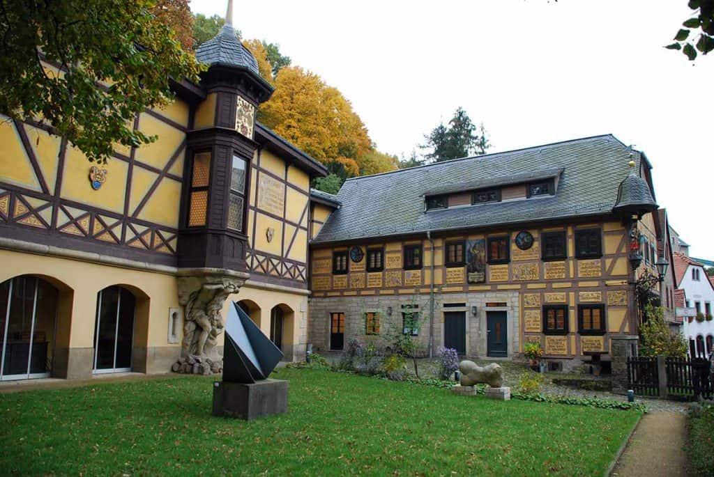 Loschwitz Rote Amsel